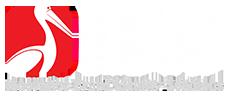 Web Designing & Internet Marketing Blog | IBIS