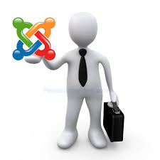 A Need for Thoughtful Analysis Prior to Joomla Customization